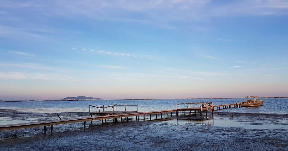Balade autour de l'étang de Thau