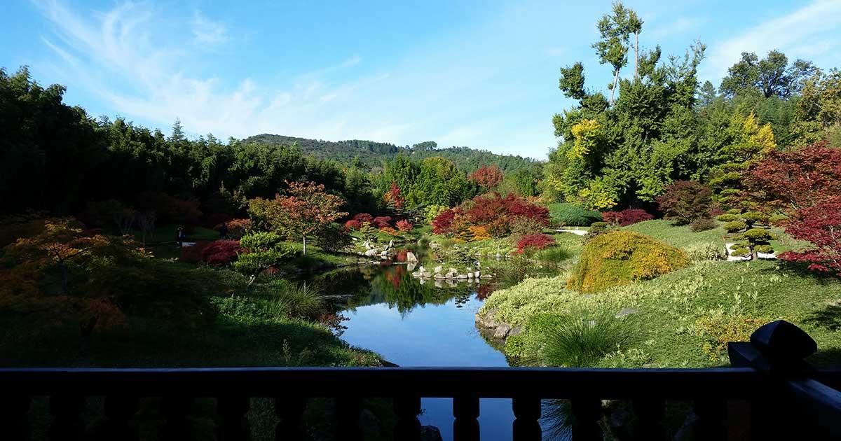 bambouseraie-anduze-jardin-japonais-sud-de-france